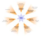 knowledge management gestion des connaissances google