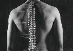 orthopractie-antoine-leconte-toulon