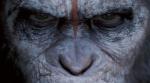 Faut-il aller voir La planète des singes : l'Affrontement ?