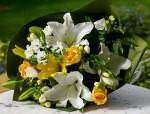 bouquet de fleurs - conseil des fleurs de Hollande